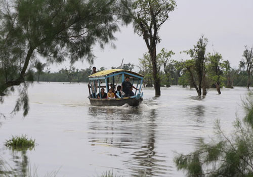 Boating, Dibru Saikhowa National Park