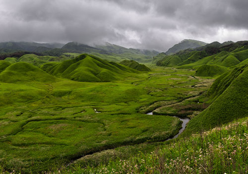 Trek to Dzukou Valley