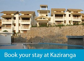 hotels at Kaziranga