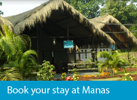 Hotel, Resort, Guest house at Manas National Park