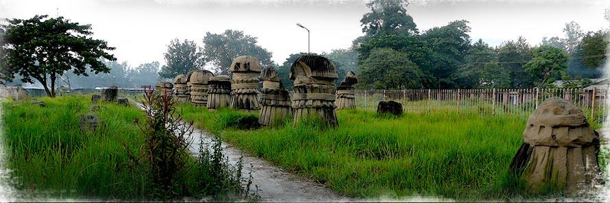 Dimapur Tourism and travel guide