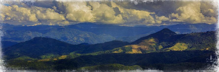 Kohima Travel