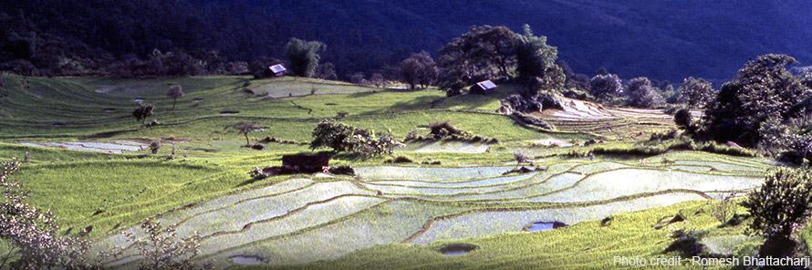 Ukhrul Tourism