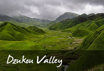 Dzukou Valley