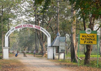 Manas National Park Tour