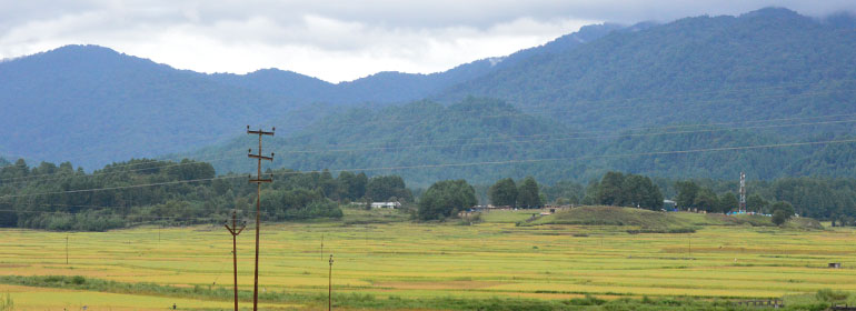 Ziro valley tour package